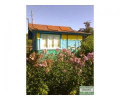 Продажа садового участка  в коллективном саду №1